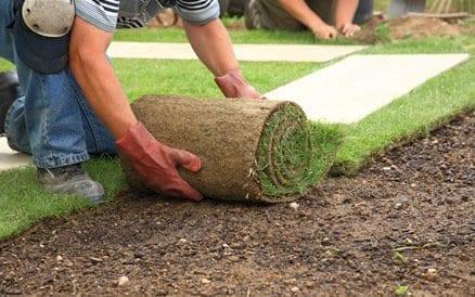 """Goed voorbereidend werk is essentieel voor het goed """"aanslaan"""" van nieuwe graszoden."""